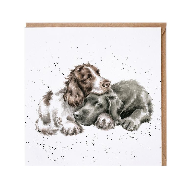 "Wrendale Doppelkarte mit Umschlag, Motiv zwei kuschelnde Hunde , ""Growing old togehter"", 15x15cm"