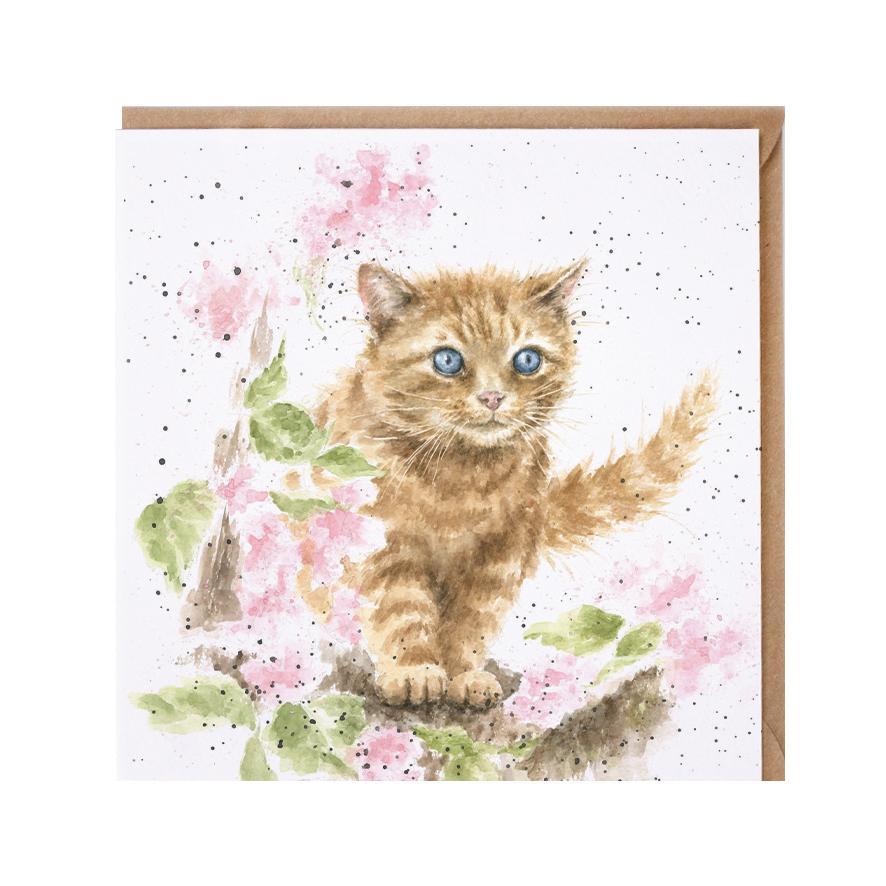 Wrendale Doppelkarte mit Umschlag, Motiv Katze mit Blumen, Quadratisch, 15x15 cm