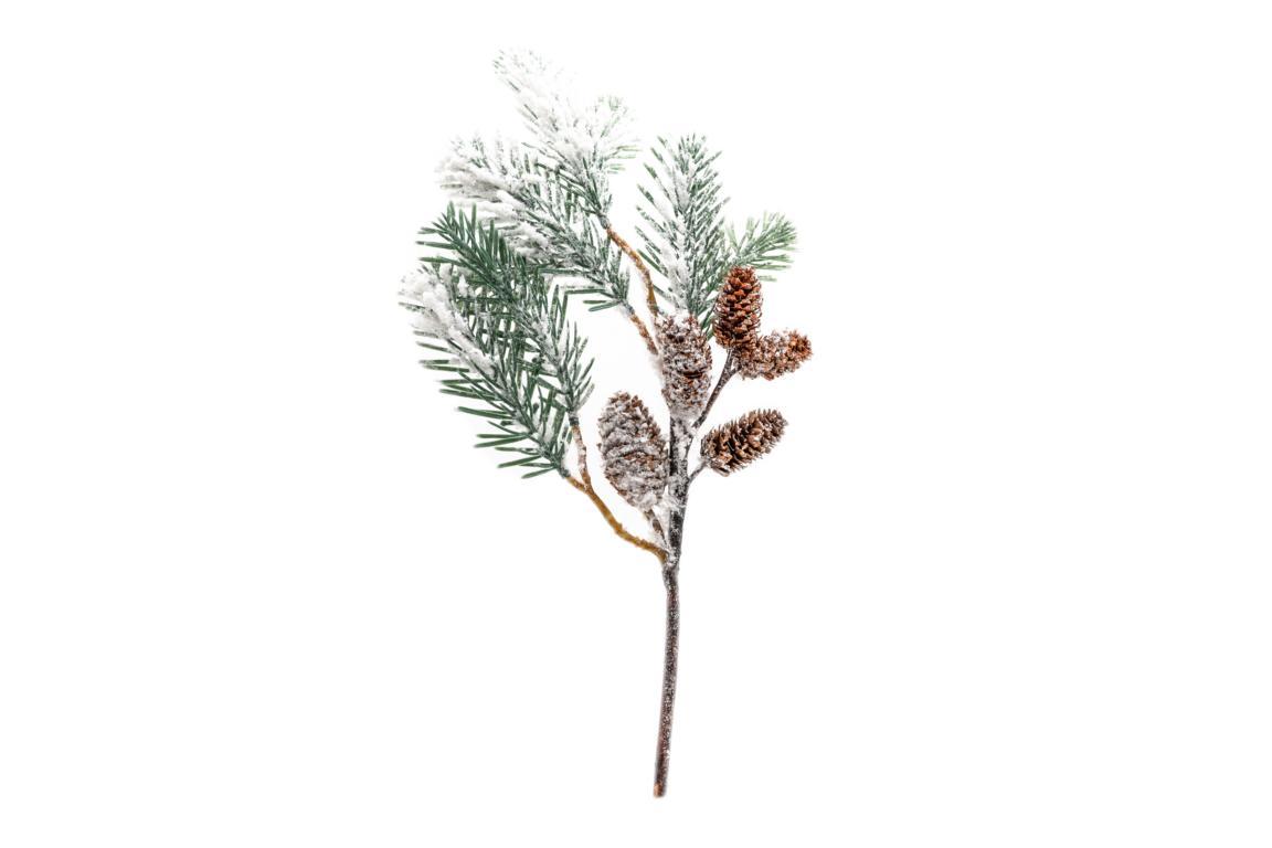 Pinienzweig verschneit mit Tannezapfen 49x20 cm