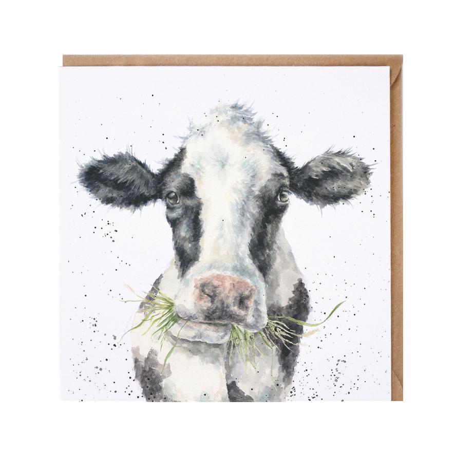 Wrendale Doppelkarte mit Umschlag, Milchkuh kaut auf Grasbüschel, Quadratisch, 15x15 cm