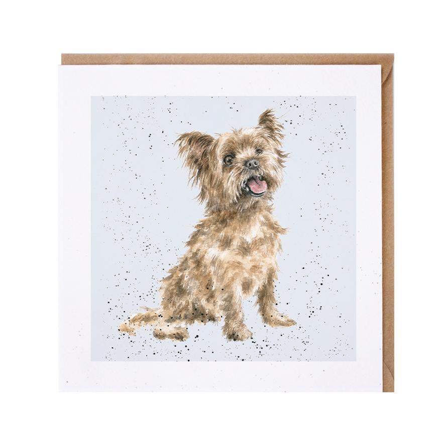 Wrendale Doppelkarte mit Umschlag Motiv Yorkshire Terrier, 15x15 cm