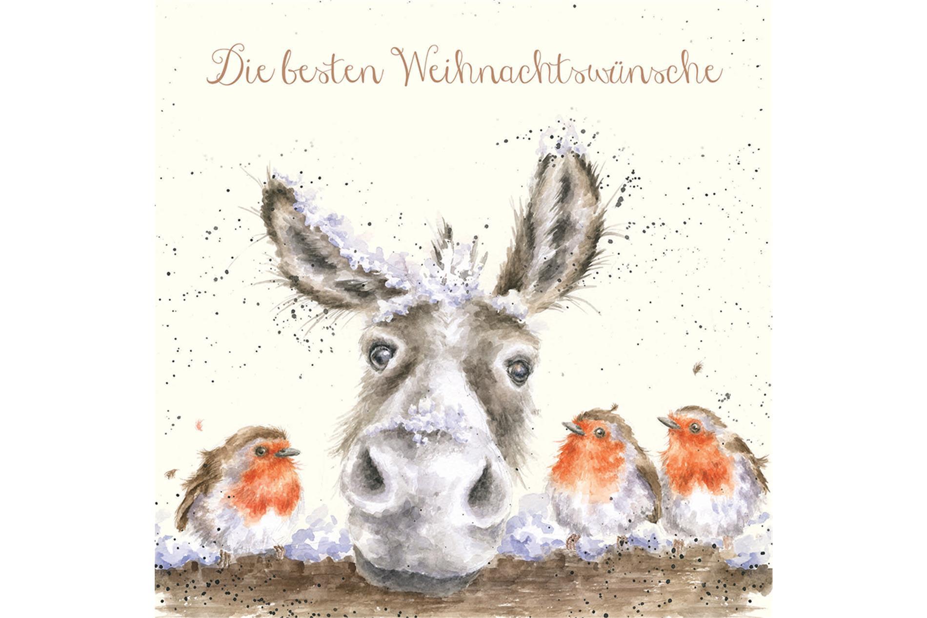 Wrendale Doppelkarte Weihnachten mit Umschlag, Die besten Weihnachtswünsche, Motiv Esel & Rotkehlchen,15x15 cm