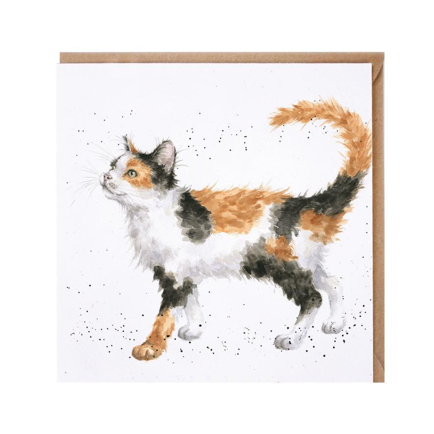 Wrendale Doppelkarte mit Umschlag, Motiv Katze seitlich, laufend, Quadratisch, 15x15 cm