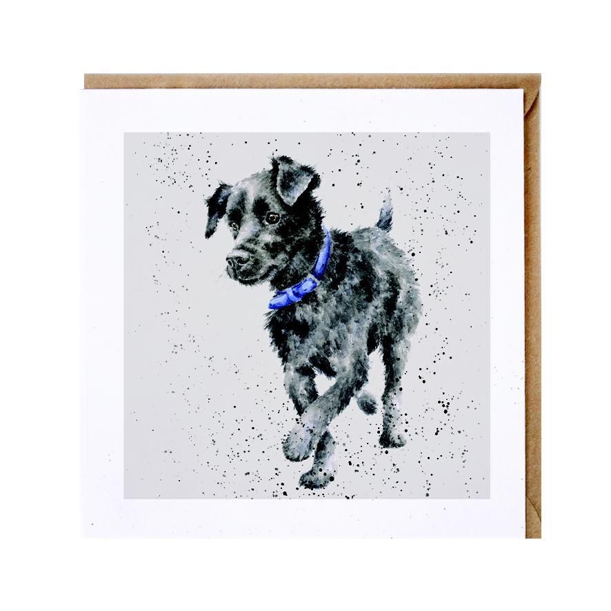 Wrendale Doppelkarte mit Umschlag Motiv Patterdale Terrier, 15x15 cm